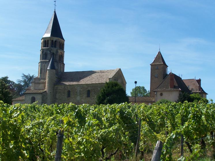 visite wine tour in the beaujolais belleville guid e par emilie sa z trouver vos visites. Black Bedroom Furniture Sets. Home Design Ideas